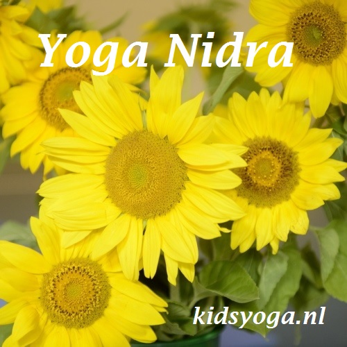 Download – Yoga nidra 12-18 year old (English)