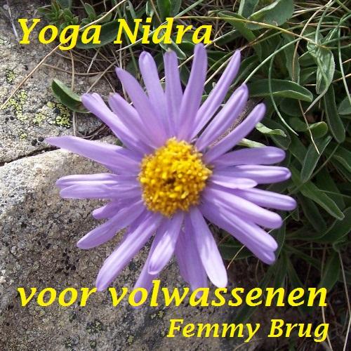 Download – Yoga Nidra voor volwassenen (Nederlands)